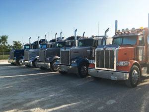 Five bulk liquid transporting trucks positioned in a line.